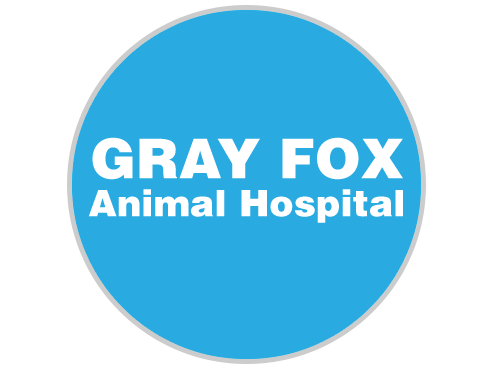 GrayFoxAnimalHospital